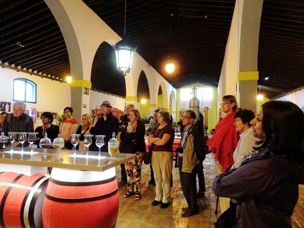Full day tour to Jerez - Gonzalez Byass sherry