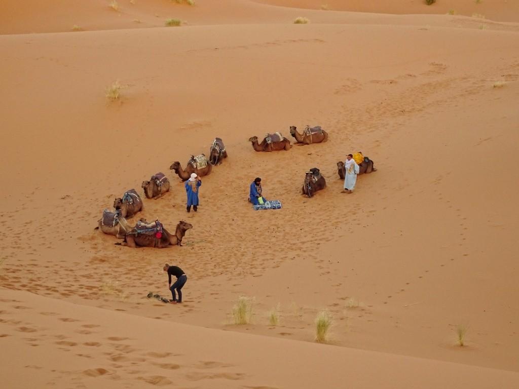 Sunrise Sahara Desert Safari