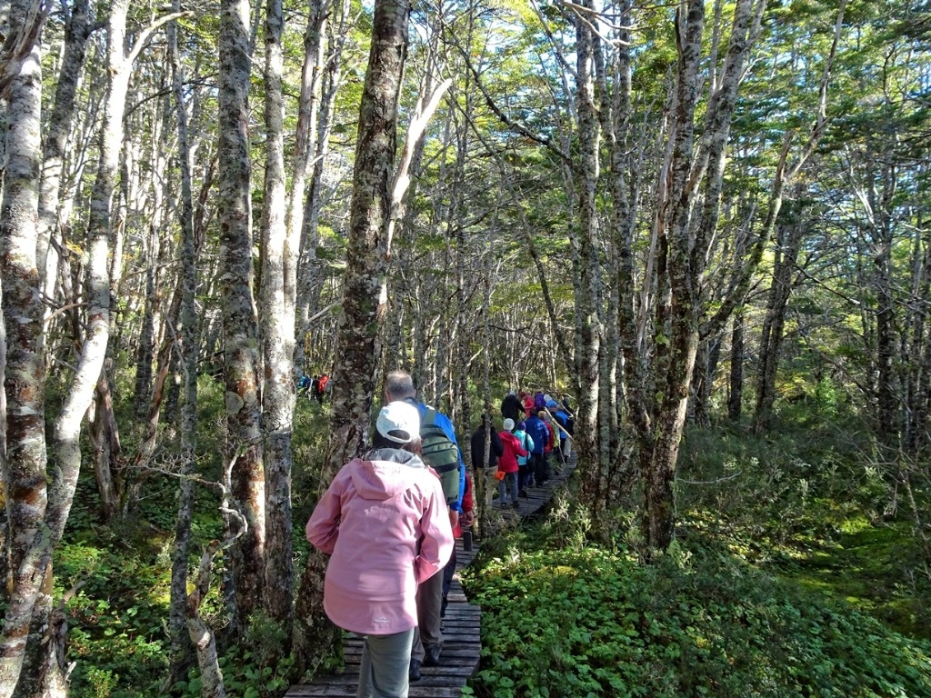 Ainsworth Bay excursion