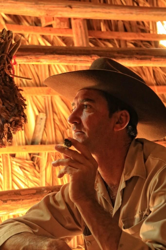 Tobacco farm, Western Cuba