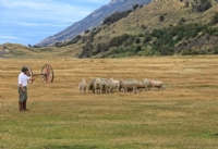 La Peninsula Ranch