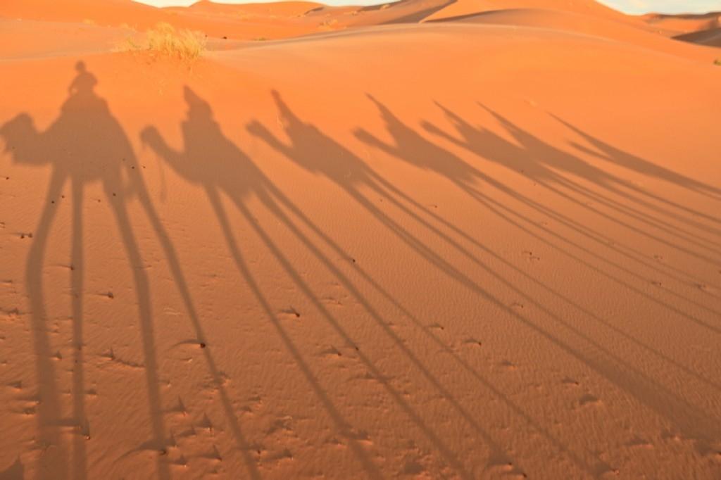 Sunset Sahara Desert Safari
