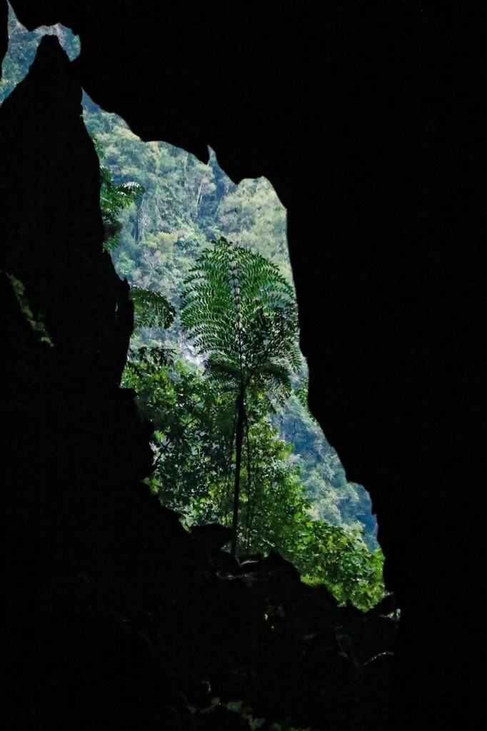 Lang Cave in Mulu National Park
