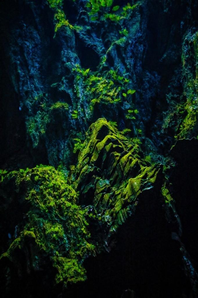 Wind Cave in Mulu National Park