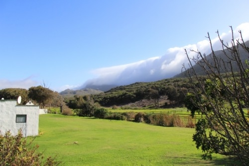 Cape Town countryside