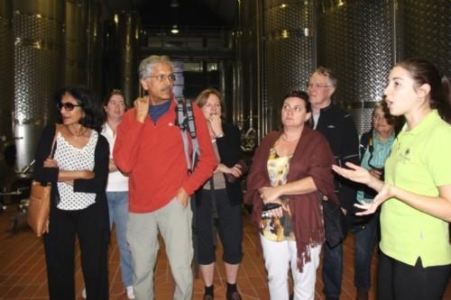 Touring Steenberg winery