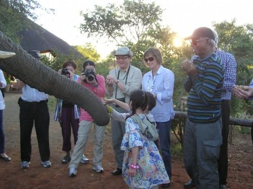 Elephant Sanctuary dinner